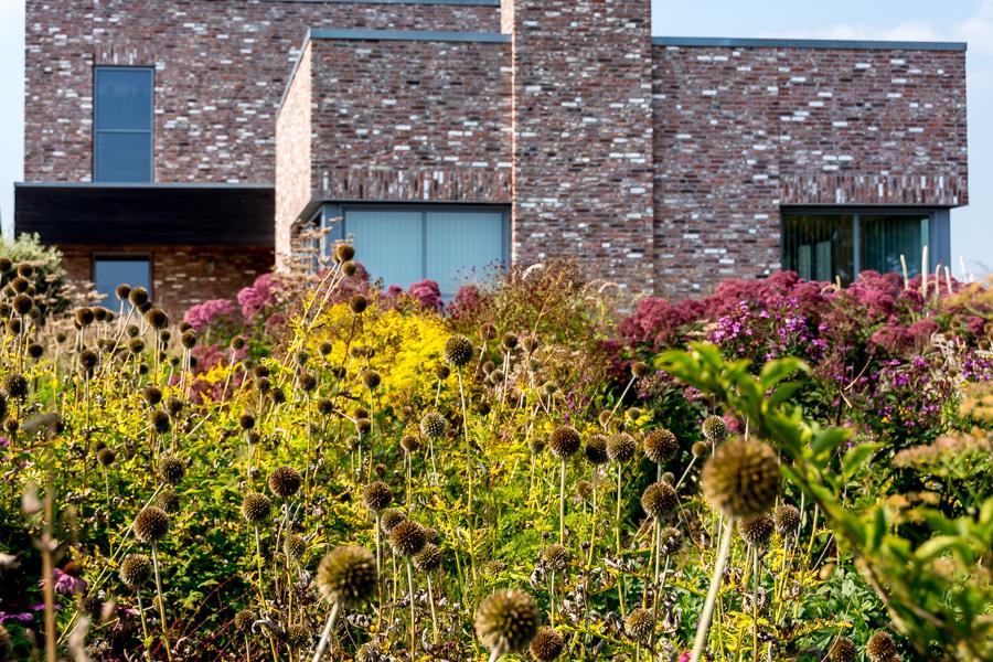 Garten von Piet Oudolf